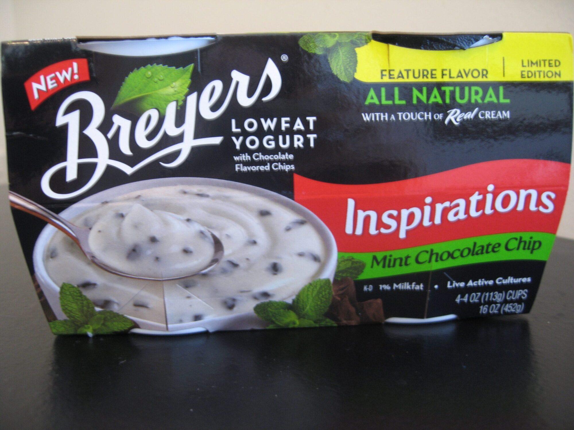 Mint Chocolate Chip Yogurt