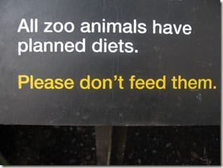 IMG 6039 thumb D.C. Zoo