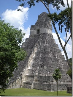 Tikal thumb If It's in the Chest…