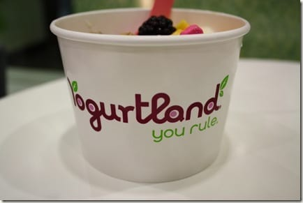 IMG 0673 thumb Yogurtland Rules