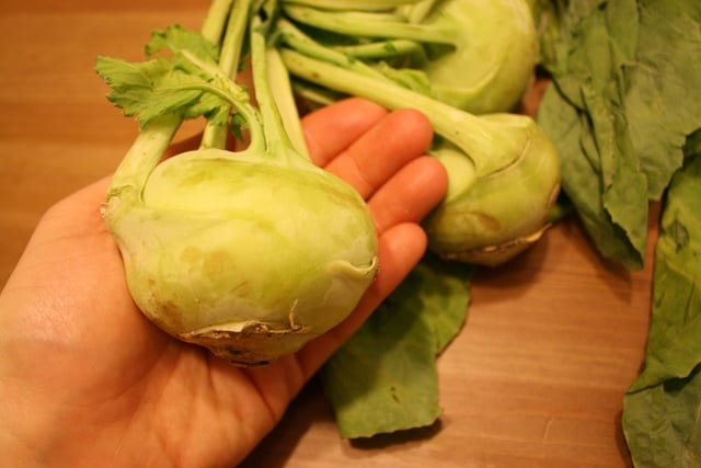 Kohlrabi and Ask A Monica III
