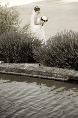 056 265x400 wedding picture