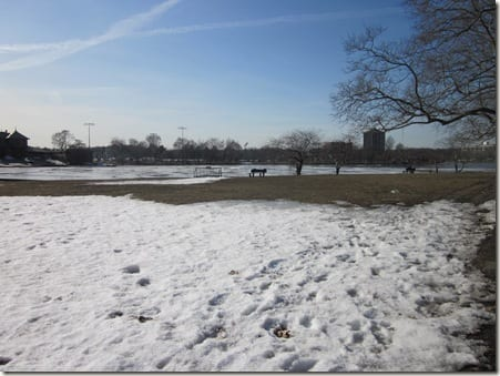 Charles River ice