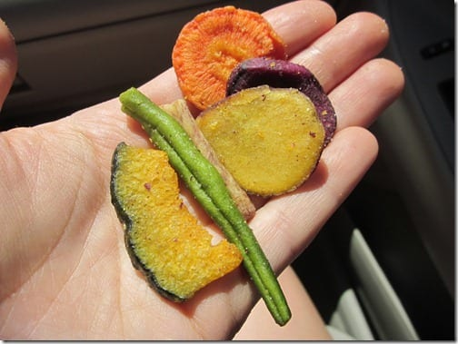 roadtrip veggie chips