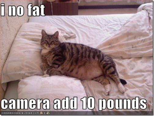 camera adds 10 pounds