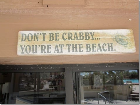 IMG 4757 800x600 thumb Don't Be Crabby, You're At The Beach