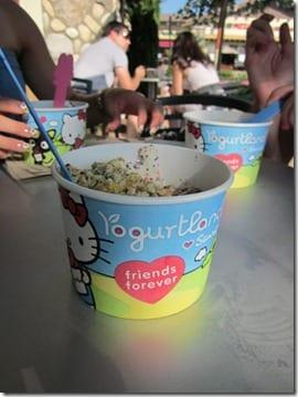 IMG 7574 600x800 thumb Bittersweet Yogurt