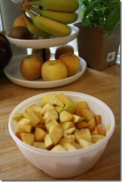 IMG 9770 533x800 thumb Pumpkin Apple Crisp Recipe
