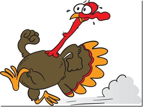 running turkey