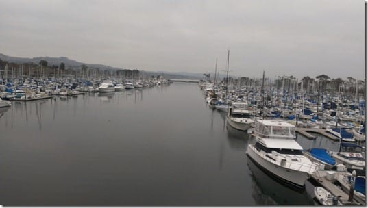 dana point marina