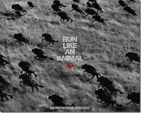 run like an animal motivation