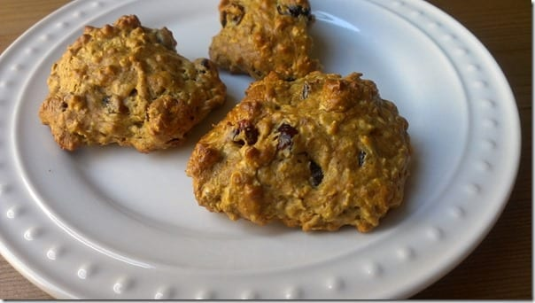 healthy oatmeal cookie recipe with protein powder final