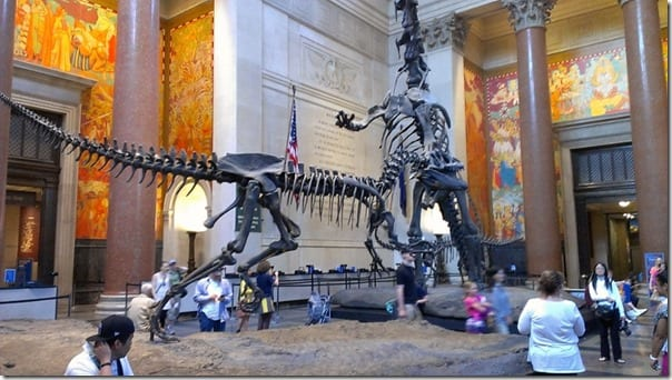 the natural history museum in new york