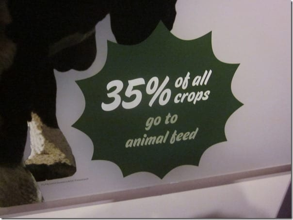 35 of all crops go to feeding animals