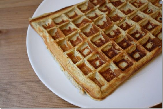 protein waffle recipe for one