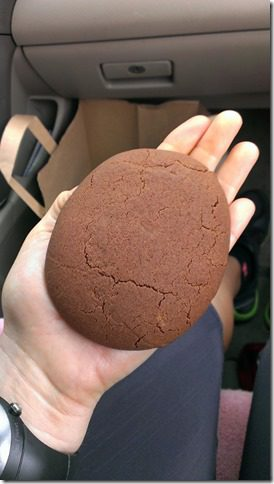 chocolate cookie in the car 450x800 thumb Thoughts from my Long Run