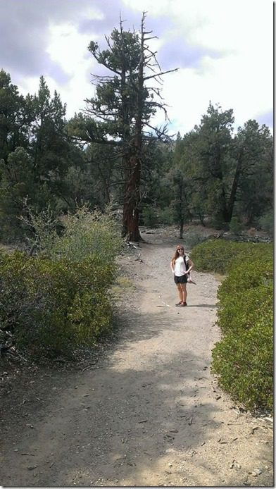 hiking in big bear 450x800 thumb Xterra Snow Valley Trail 21K Race Recap