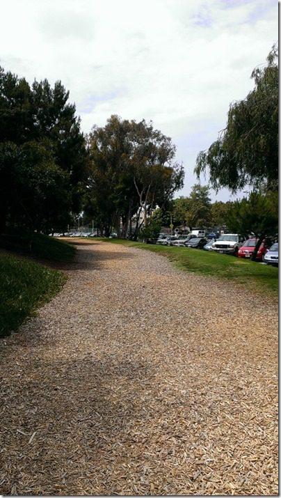 manhattan beach path 450x800 thumb Friday Fun with Carrots N' Cake