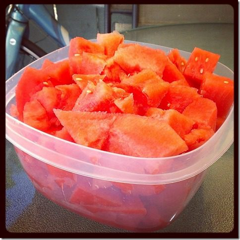 watermelon for days (800x800)