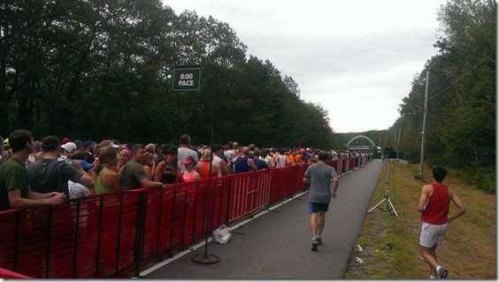 beach to beacon corral start line (800x450)