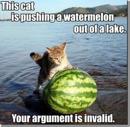 cat pushing watermelon