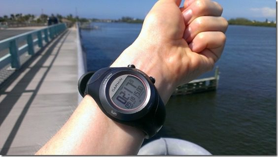 15 miles in h e double hockey sticks 800x450 thumb That Time I Saw a Manatee and fell in Love