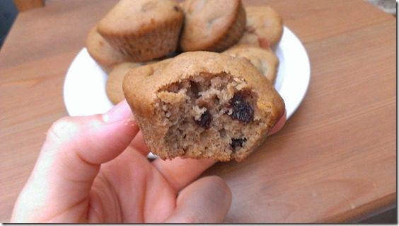 chocolate chip muffin (800x450)