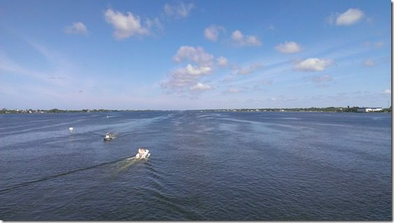 from the bridge view 800x450 thumb That Time I Saw a Manatee and fell in Love