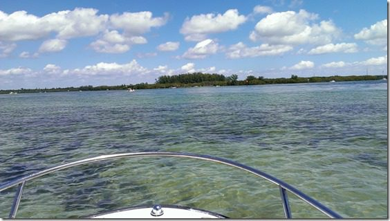 on a boat on a boat 800x450 thumb That Time I Saw a Manatee and fell in Love