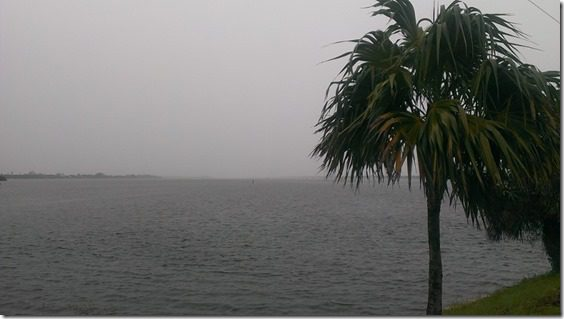 rainy day in Florida (800x450)