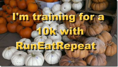 training for a 10k image
