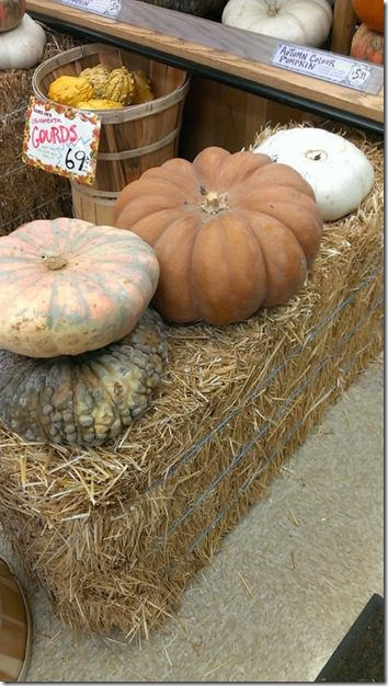 trader joes cinderalla pumpkins 450x800 thumb Trader Joe's Must Haves for Fall