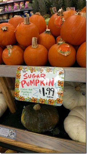 trader joes sugar pumpkins (450x800)