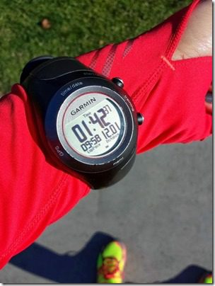 12 miles on saturday (668x501)