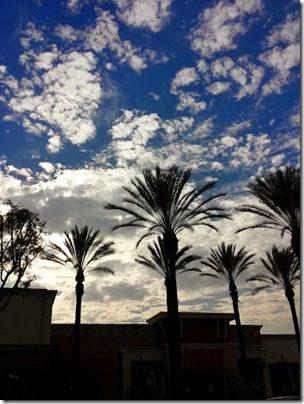 blue skies (376x501)