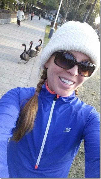 run in china with black swans (450x800)