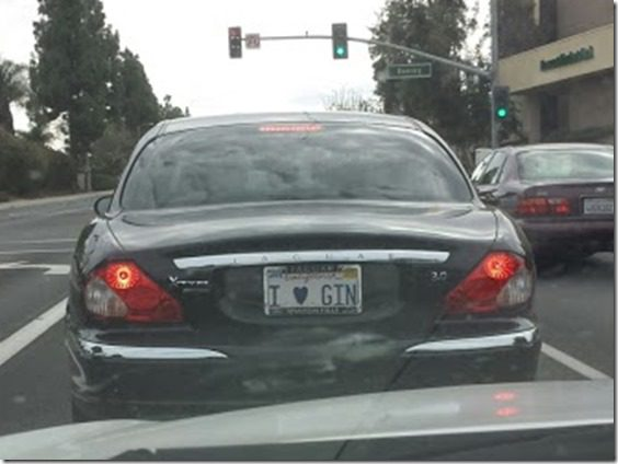 i love gin license plate (669x502)