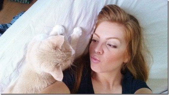 kiss the cat (800x450)