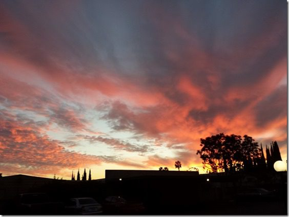 pink sunset (800x600)