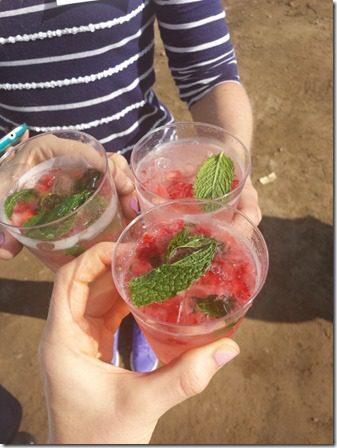 california strawberry farm visit blogger cheers (600x800)