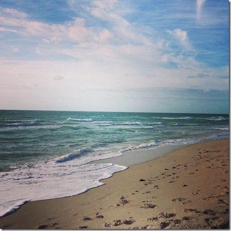 beach in miami (640x640)