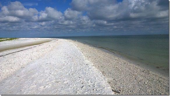 WP 20140609 08 53 26 Pro 800x450 thumb1 Running on Marco Island, Florida
