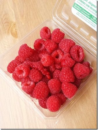 eating all the raspberries 800x600 thumb Best Things To Do in Savannah–HELP!