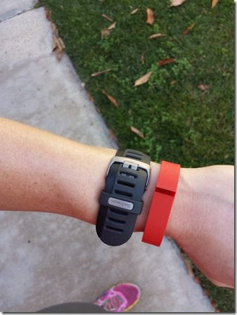 garmin and fit bit 600x800 thumb Do Coyotes Attack Runners and Bad News For Champagne Lovers!