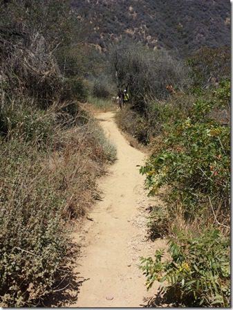 hike in la 2 (600x800)
