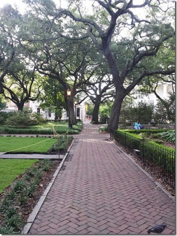 running through savannah (600x800)