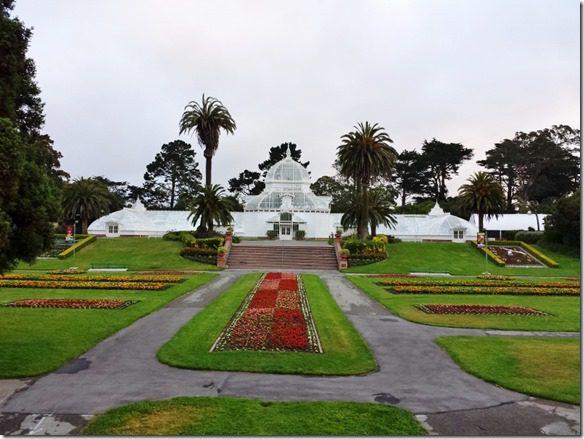 walk in golden gate park 2 (800x600)