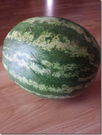 watermelon for life (600x800)