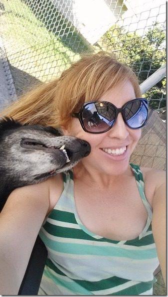 dog selfie (800x450)