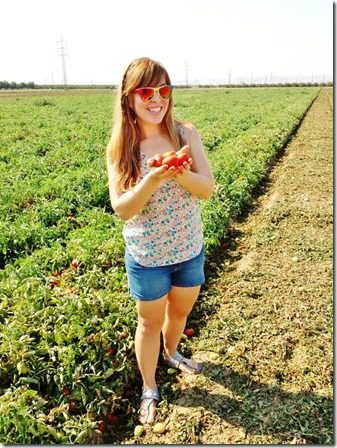fun on the tomato farm (600x800)